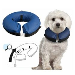 collar isabelino inflable perros