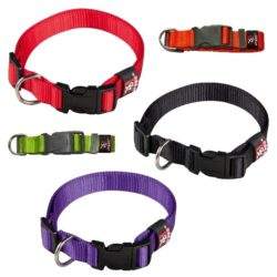 collar nylon plano basic perros